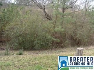 741 Hwy. 31, Hayden, AL 35180 Photo 12