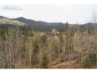 Home for sale: 240 Molly Kathleen Dr., Cripple Creek, CO 80813