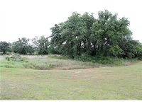 Home for sale: Lot 41 Falcon Dr., Glen Rose, TX 76043