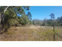 Home for sale: Tucker Avenue, Osteen, FL 32764