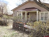 Home for sale: 34562 State Hwy. 17, Antonito, CO 81120