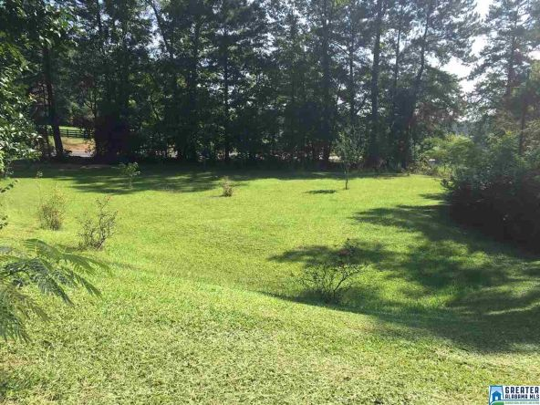 17462 Hwy. 174, Pell City, AL 35125 Photo 4