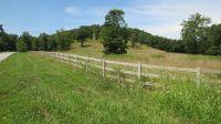 Home for sale: Brookside Dr., Chestnutridge, MO 65630