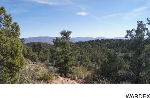 6731 N. Trap Springs Rd., Hackberry, AZ 86411 Photo 25