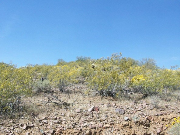 33404 N. 5th St., Phoenix, AZ 85085 Photo 4