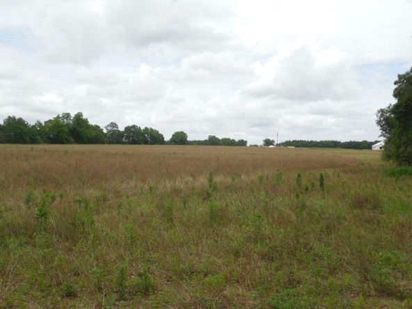 7.8acres Hardy Rd., Rehobeth, AL 36301 Photo 15