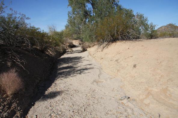 55410 W. Ivory Rd., Maricopa, AZ 85139 Photo 5