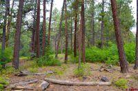 Home for sale: Tbd Sierra Dr., Durango, CO 81301