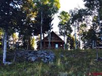 Home for sale: Tbd Long Draw Rd., Powderhorn, CO 81243