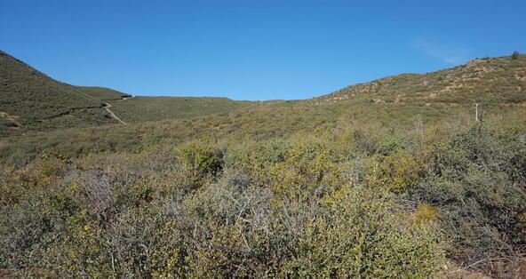 20 Freeport, Dewey, AZ 86327 Photo 95