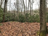 Home for sale: Tbd Skye Dr., Pisgah Forest, NC 28768