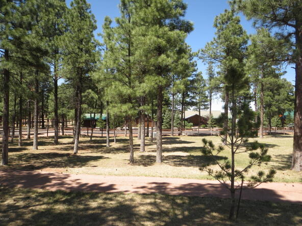 2295 Bison Ranch Trail, Overgaard, AZ 85933 Photo 48