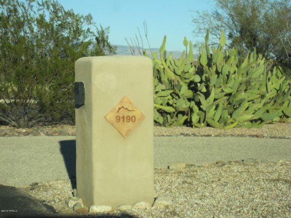 9190 E. Sycamore Springs, Vail, AZ 85641 Photo 53