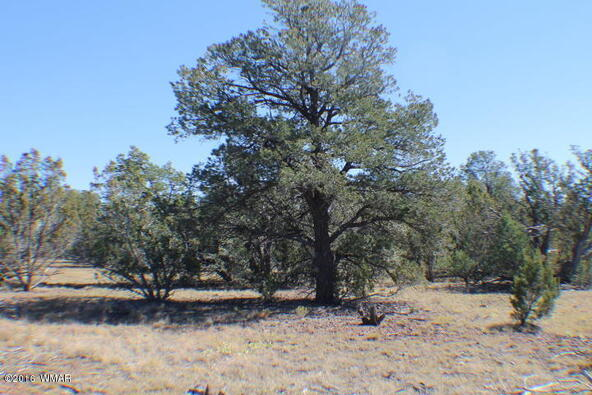 8 Acres Off Of Acr N. 3114, Vernon, AZ 85940 Photo 21