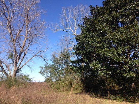 14251 Us Hwy. 98, Magnolia Springs, AL 36555 Photo 4