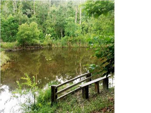 6700 Spice Pond Dr., Eight Mile, AL 36613 Photo 4
