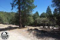 Home for sale: 22215 Cadenza, Sonora, CA 95370
