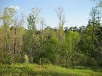 Home for sale: 00 Hwy. 24 W., Woodville, MS 39669