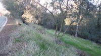 Home for sale: 0 Ridgecrest Ct., Lot 1, Sutter Creek, CA 95685