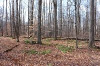 Home for sale: Lot 24 Horseshoe Dr., Honesdale, PA 18431