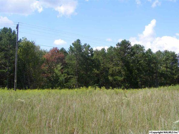 1030 County Rd. 664, Valley Head, AL 35989 Photo 4