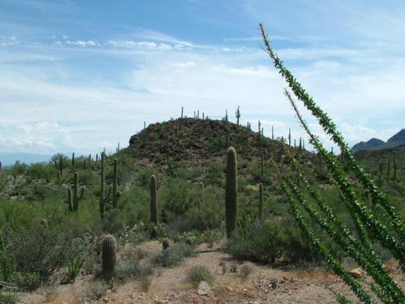6940 W. Wasson Vista, Tucson, AZ 85745 Photo 9