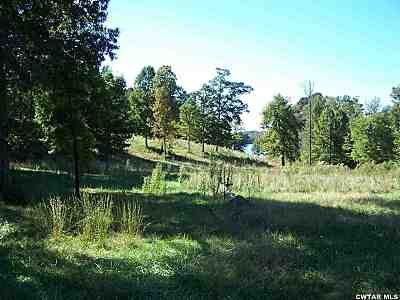 0 Lot #46 Pine Haven Rd., Lexington, TN 38351 Photo 3
