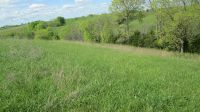 Home for sale: 1613 Pecks Ridge Rd., Flemingsburg, KY 41041