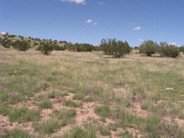 206e Bixler Trail, Ash Fork, AZ 86320 Photo 11