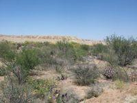Home for sale: 4360 W. Camino del Yucca, Sahuarita, AZ 85629
