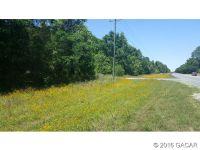 Home for sale: 100 S.W. Barber Glen, Fort White, FL 32038