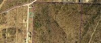 Home for sale: Anne Ln., Branson, MO 65616