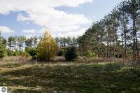 Home for sale: 0023 Lipp Farm Rd., Benzonia, MI 49616