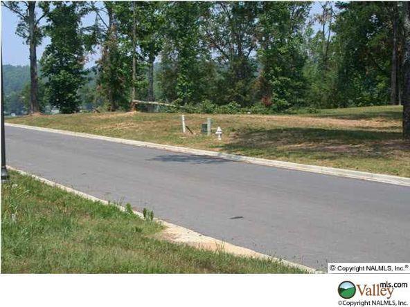 115 Lake Creek Dr., Guntersville, AL 35976 Photo 5