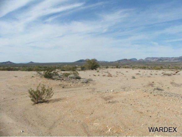 16775 S. Douglas Ln., Yucca, AZ 86438 Photo 3