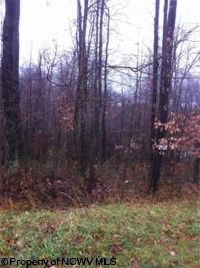 Home for sale: Lot 9 Sine Pl., Bruceton Mills, WV 26525