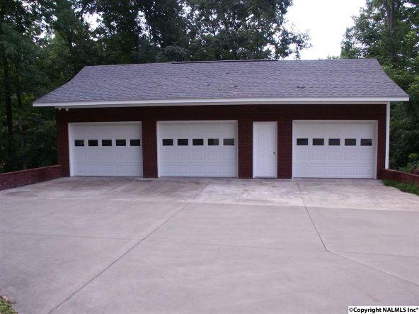 770 Cr 562, Rogersville, AL 35652 Photo 5