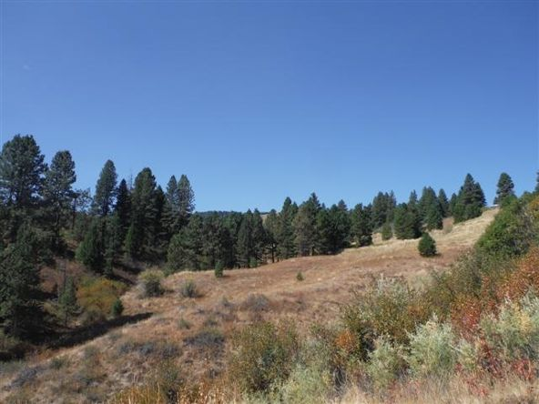 16 Sioux Crt Lot 18, Boise, ID 83716 Photo 3