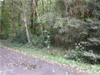 Home for sale: 13737 Marcon Ln. S.W., Rochester, WA 98579