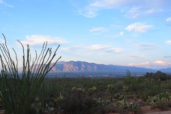 6tbd W. Sweetwater, Tucson, AZ 85745 Photo 4