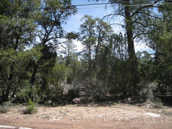 2901 Buckskin Rd., Overgaard, AZ 85933 Photo 2
