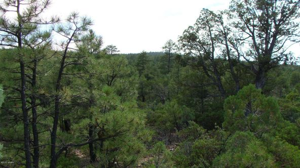 2380 S. Twin Peak Trail, Show Low, AZ 85901 Photo 1