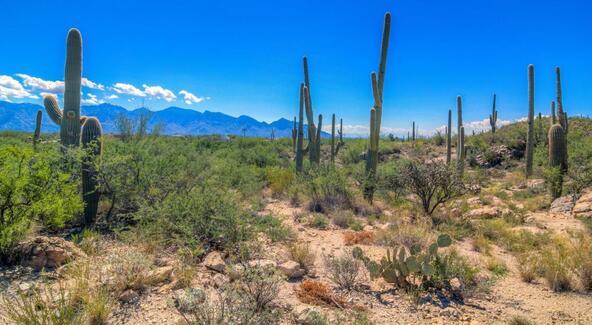 1037 W. Tortolita Mountain, Oro Valley, AZ 85755 Photo 82