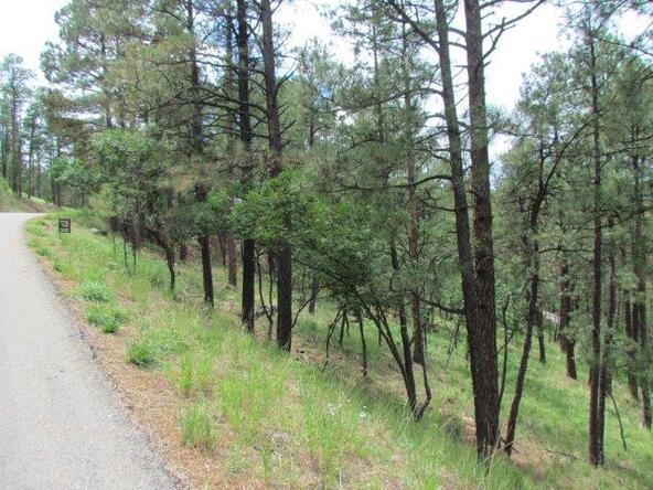 119 del Monte Dr., Alto, NM 88312 Photo 2