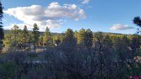 Home for sale: 795 Eagle Pass, Durango, CO 81301