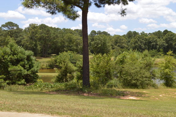 404 Turtleback Trail, Enterprise, AL 36330 Photo 57