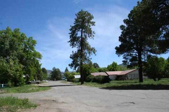 501 Pine, Chama, NM 87520 Photo 3