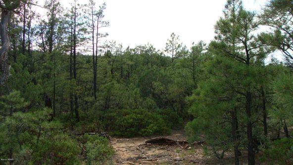 2380 S. Twin Peak Trail, Show Low, AZ 85901 Photo 4