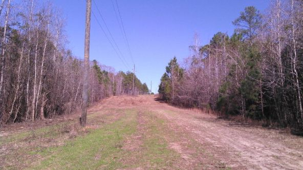 1 County Rd. 57, Abbeville, AL 36310 Photo 1