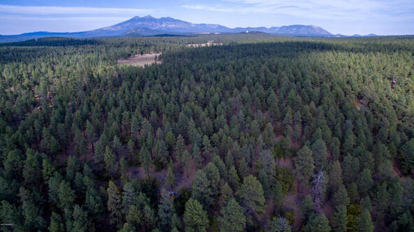 8100 W. Dk Ranch Rd., Flagstaff, AZ 86005 Photo 6